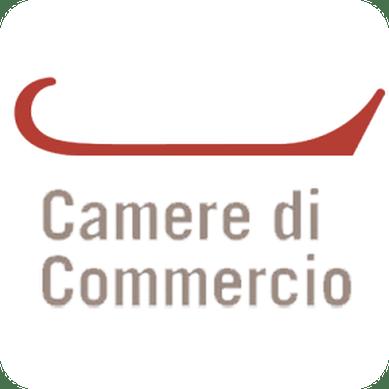 Diritto camerale 2016