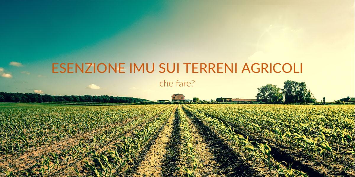 Esenzione IMU fabbricati agricoli